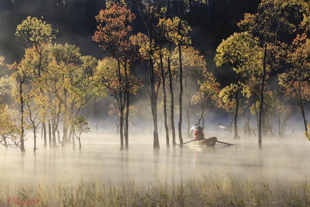Cảnh tượng trong một cách rừng ngập nước thuộc hồ Tuyền Lâm khiến ai lần đâu xem qua cũng ngạc nhiên, không nghĩ cảnh này được chụp ở Đà Lạt. Ảnh: Võ Trang.