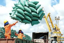 Thủ tướng chỉ đạo thanh tra có hay không dấu hiệu trục lợi, tiêu cực trong công tác quản lý nhà nước về xuất khẩu gạo để xử lý nghiêm