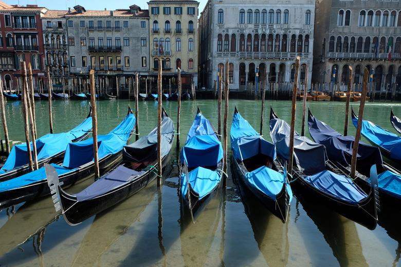 Những dòng kênh ở thành phố Venice, Ý có nước trong xanh, có thể nhìn thấu bên dưới khi hoạt động du lịch ngừng khai thác. Thời gian trước, nơi đây là địa điểm yêu thích của khách du lịch với hoạt động chèo thuyền nên dòng kênh lúc nào cũng đục, thậm chí có rác.