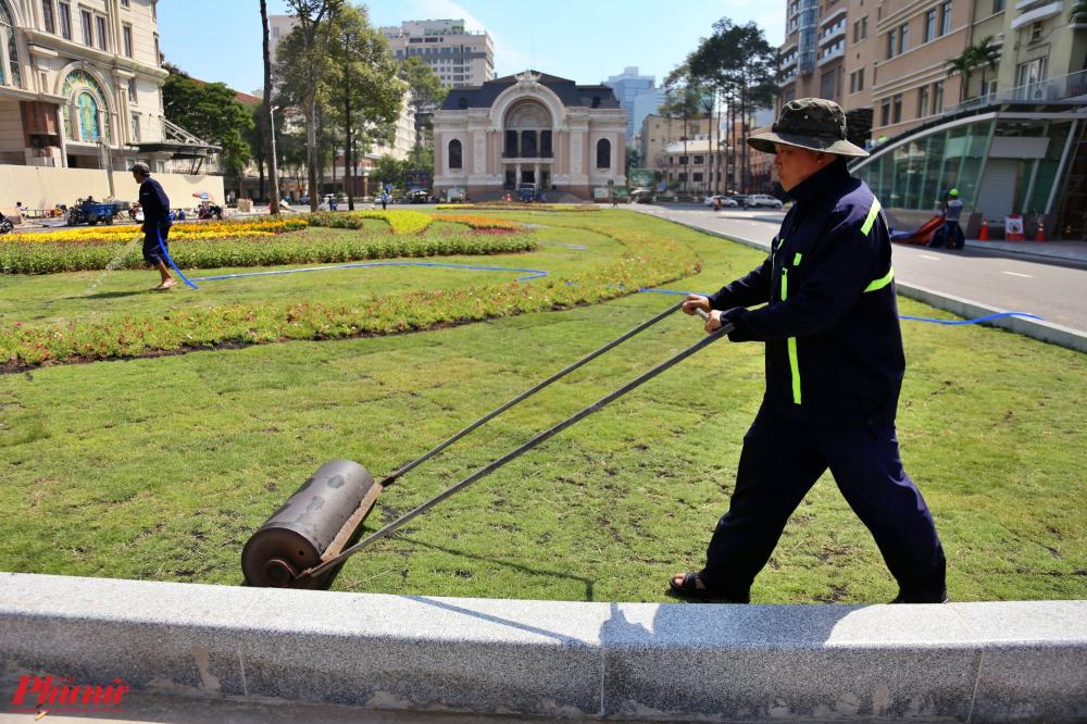 Các công nhân đang tấp bật làm việc, trải thảm cỏ xanh