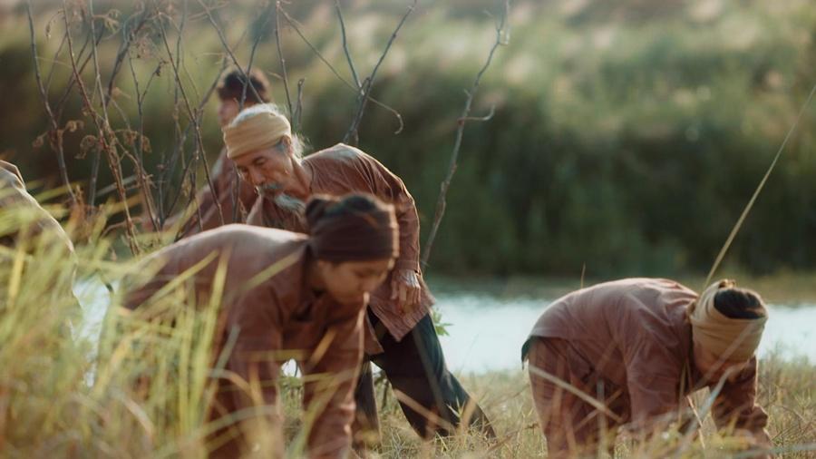 Cảnh người dân thu hoạch lúa được tái hiện khá sinh động trong phim.