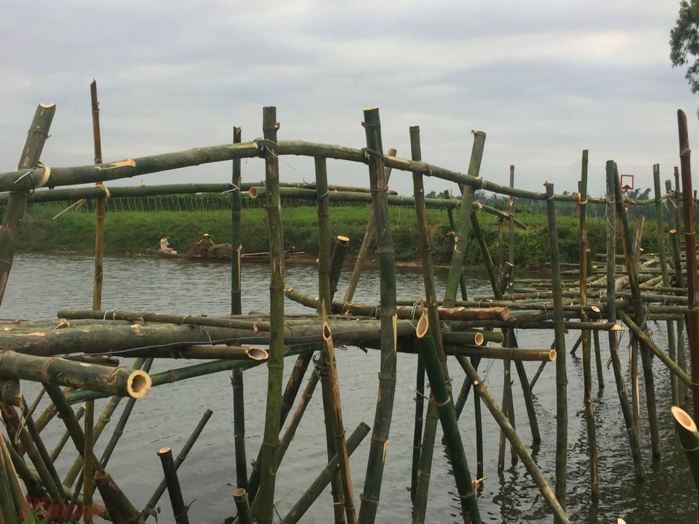 """Cách cây cầu tre nói trên chừng 200m về phía hạ lưu, người dân Thanh Lương 2 còn đóng thêm hàng rào tre khoảng 20m cặp dọc theo một địa điểm xói lở nặng khi bị ăn sâu vào bờ chừng 10m để vừa hạn chế xói lở, vừa ngăn không cho """"sa tặc"""" vươn vòi"""