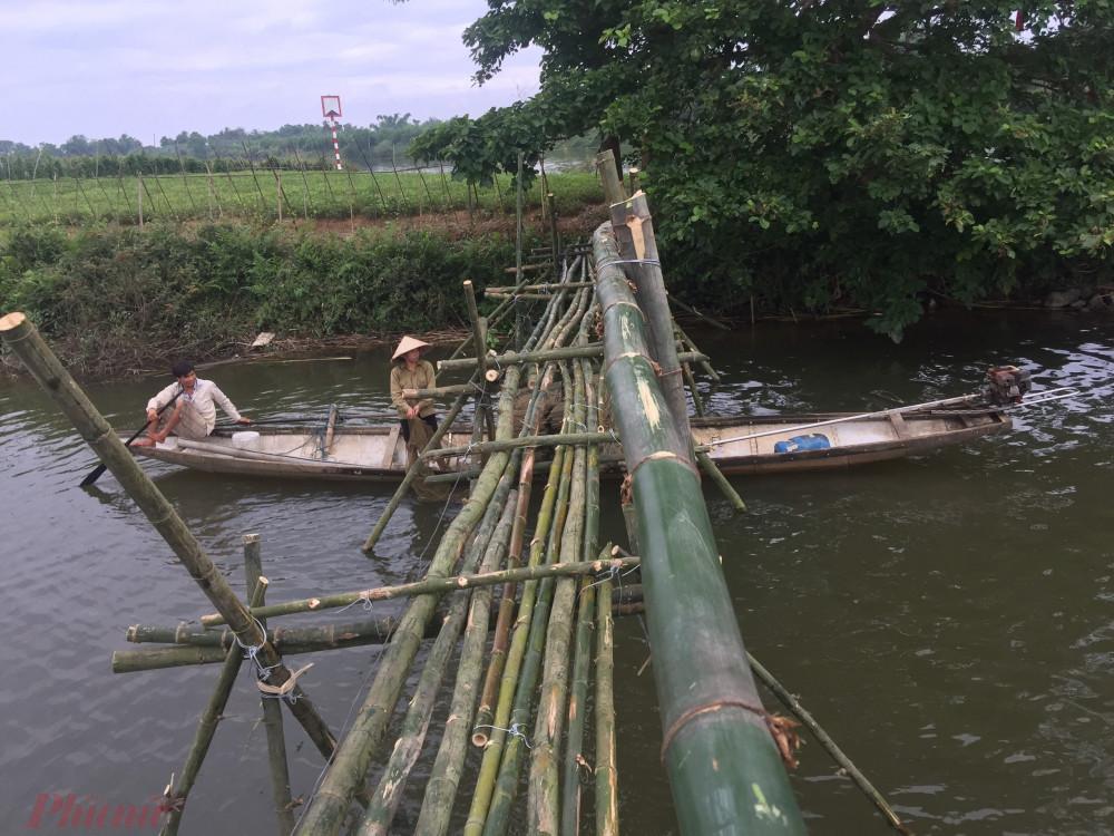 Cây cầu không ảnh hưởng đến sinh kế của gia đình khi thuyền làm nghề vẫn qua về thuận tiện