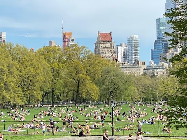 Người dân đổ xỗ đến các công viên tại thành phố New York sưởi nắng.