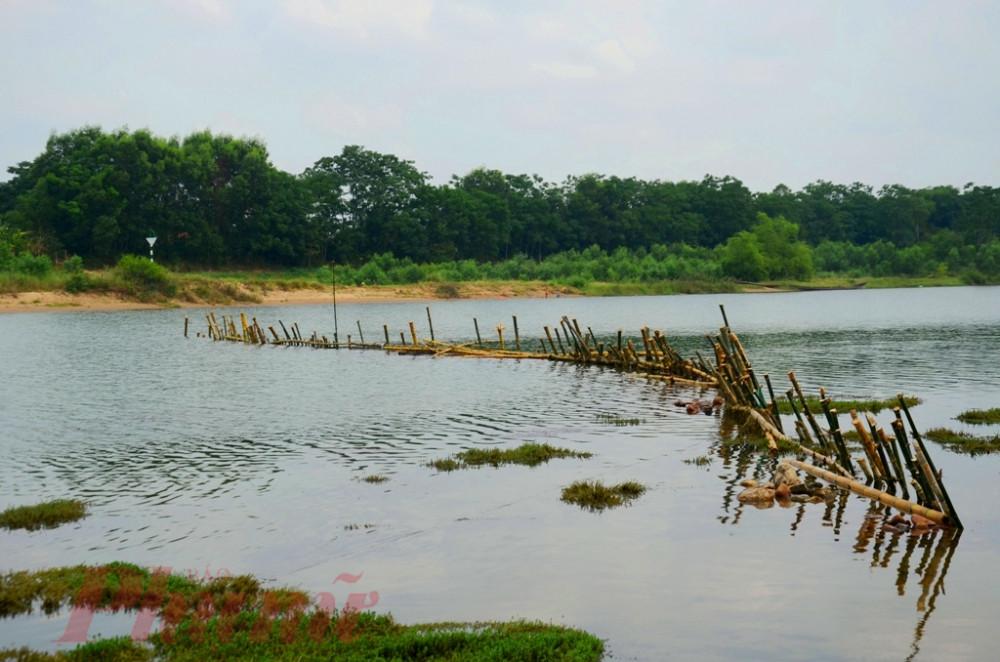 Người dân lập trận địa cọc tre chống sa tặc vào đầu tháng 5/2019 ở thượng nguồn sông Bồ
