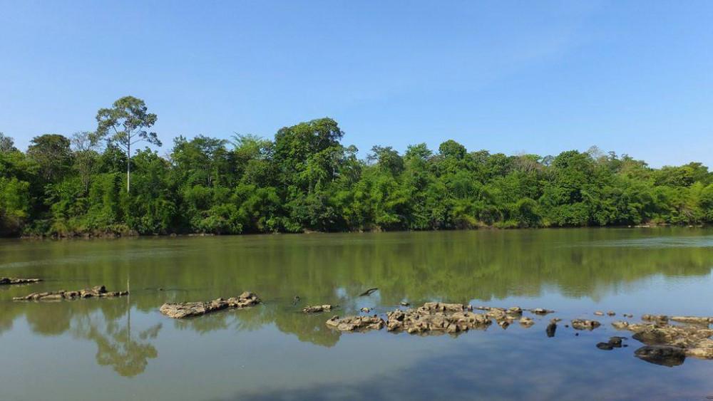 Một góc vườn quốc gia Yok Don