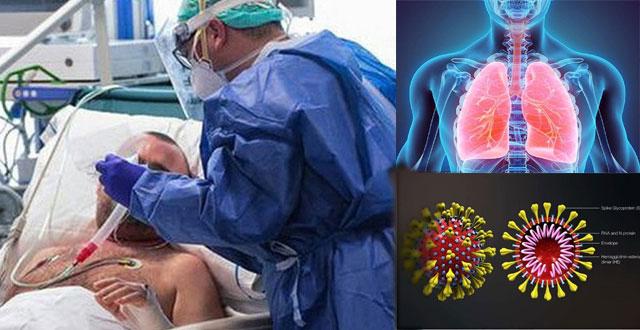 Đã có gần 40 người đăng ký hiến tạng cho bệnh nhân người Anh, thông qua Trung tâm điều phối hiến ghép mô tạng Quốc gia