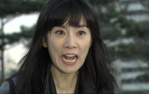 Vai diễn Shin Ae trong Sự quyễn rũ của người vợ.