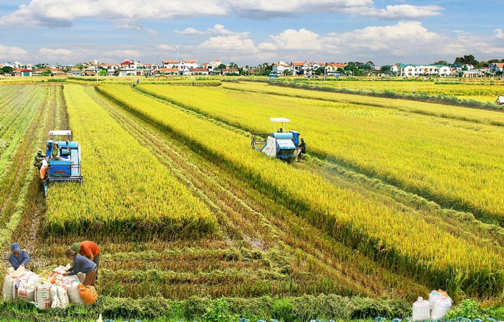 Sắp tới, tỉnh Vĩnh Long sẽ xây bảo tàng nông nghiệp đầu tiên của nước ta