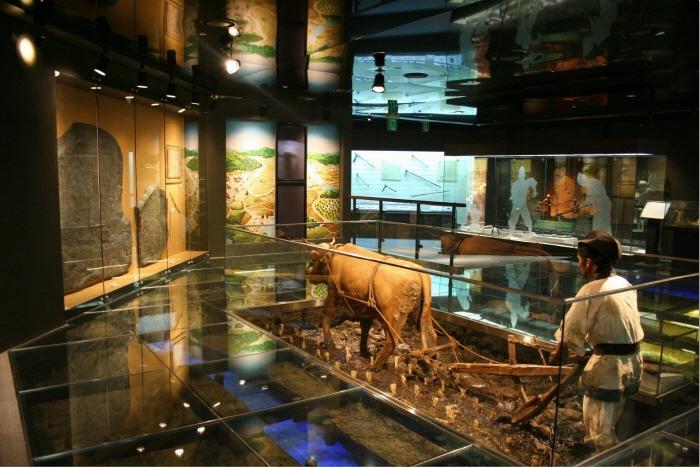 Một góc Bảo tàng nông nghiệp ở thủ đô Seoul (Hàn Quốc).