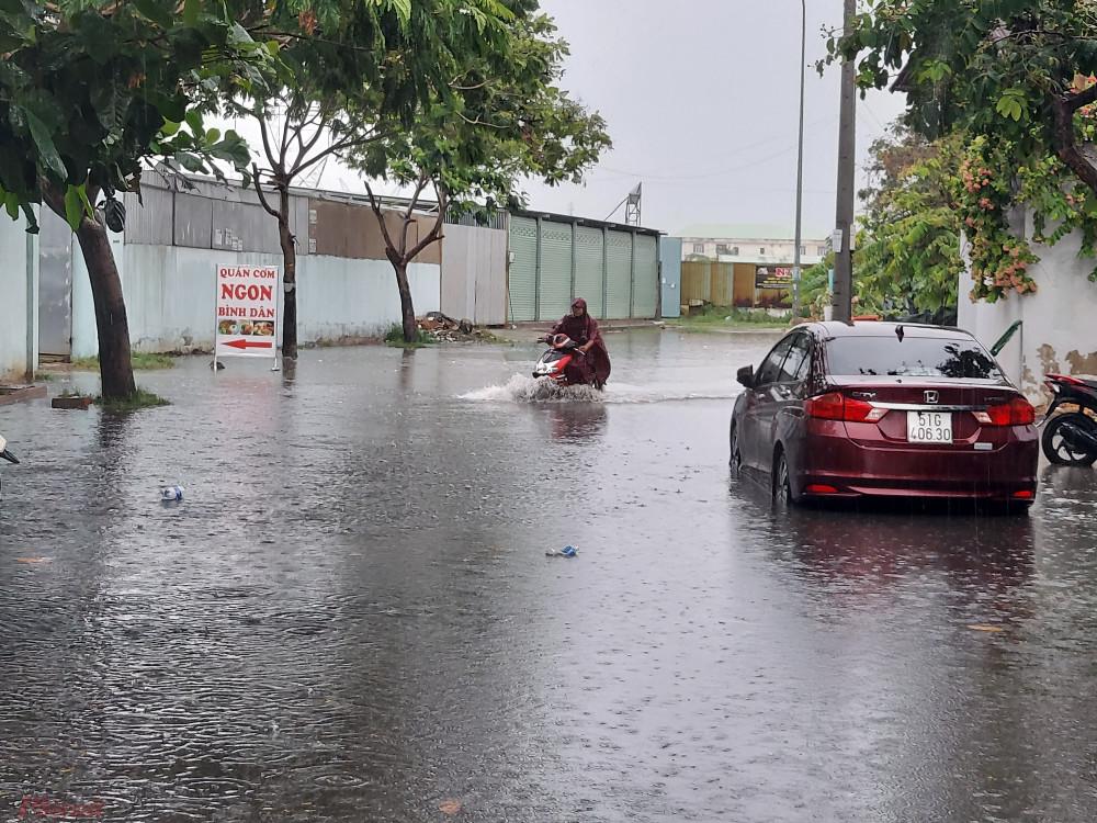 Đường vào Khu dân cư Phú Định nước ngập sâu khoảng nửa mét. Theo người dân, cứ hễ có mưa lớn là họ phải lội nước vào nhà.