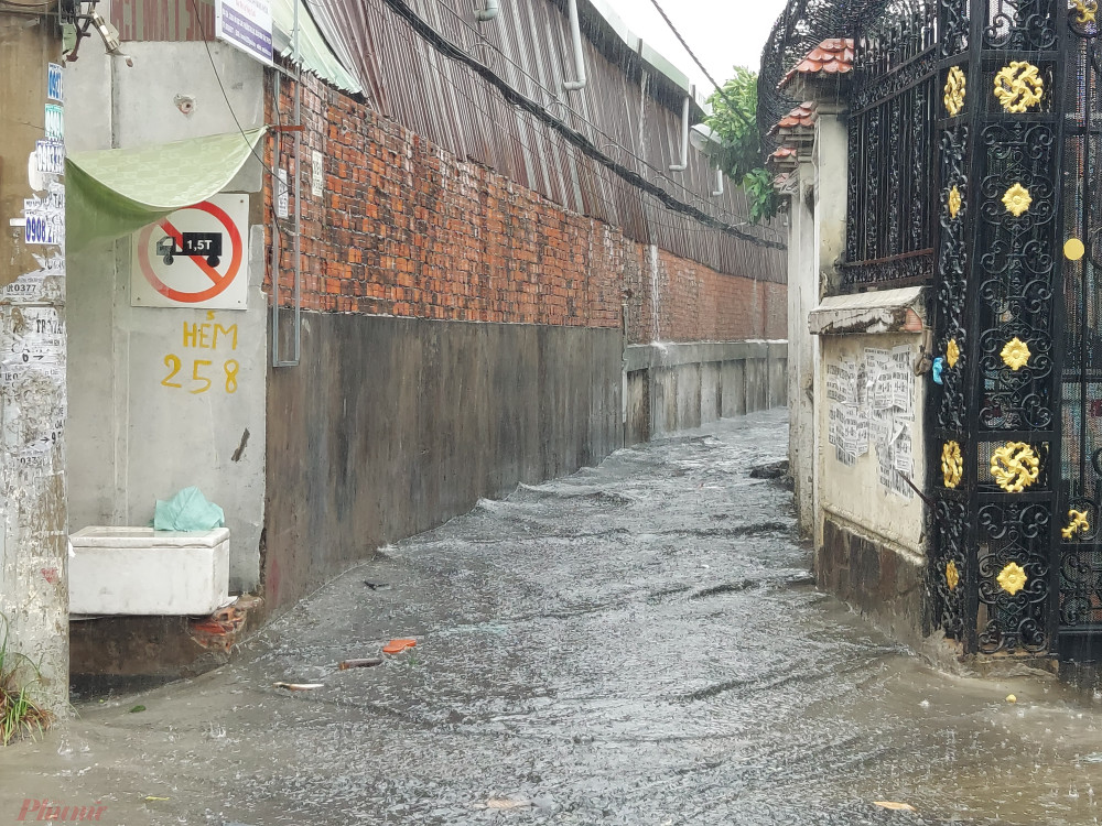 Dòng nước cuồn cuộn chảy vào hẻm 258 đường Hồ Học Lãm.