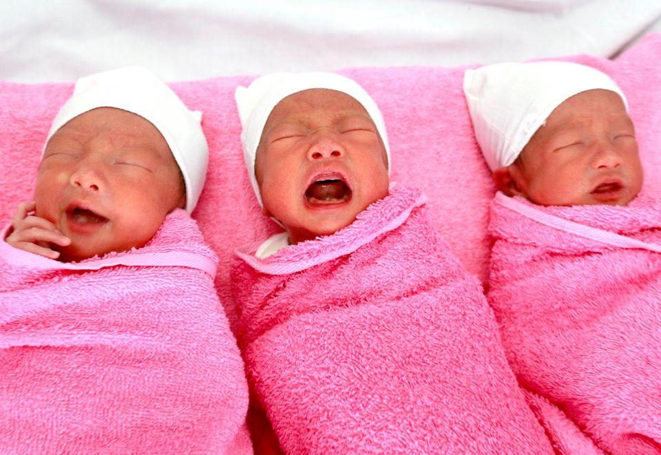 3 bé gái được đặt tên là Keo, Bông, Gòn, ảnh BVCC