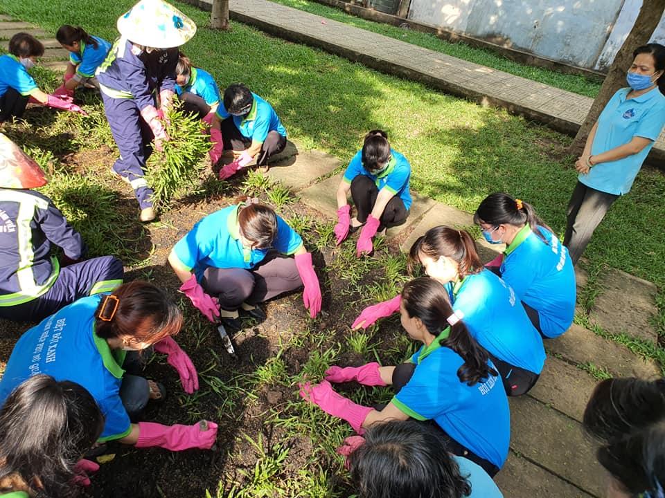 Các dì chị trồng cỏ tại hoa viên