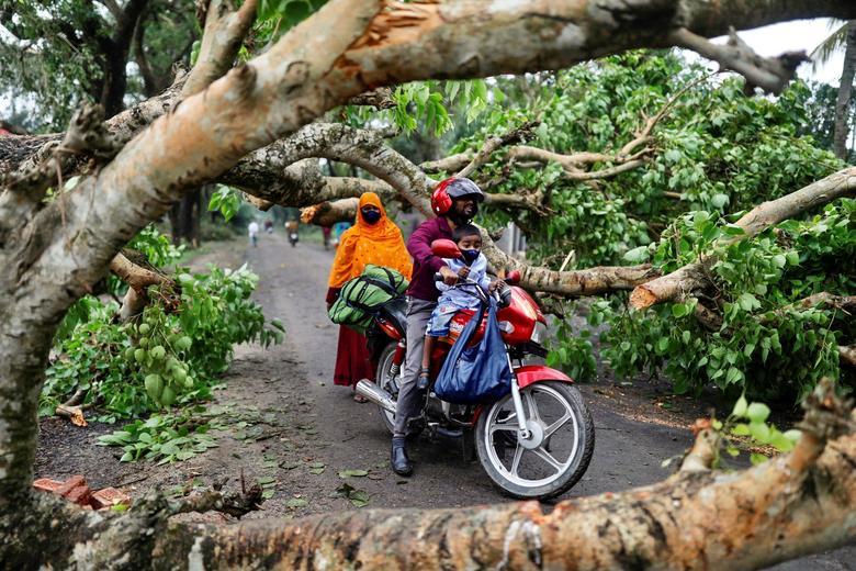 Bão Amphan kèm lốc xoáy mạnh nhất trong hơn một thập kỷ qua đã khiến vùng duyên hải của Ấn Độ và quốc gia láng giềng Bangladesh bị ảnh hưởng nặng nề. Trong ảnh, hai cha con người Bangladesh đi trên xe máy bị một cây to đổ ngã ngang đường