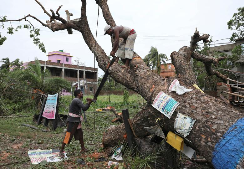 Trận lốc xoáy đã làm đổ ngã nhiều cây cổ thụ ở Tây B