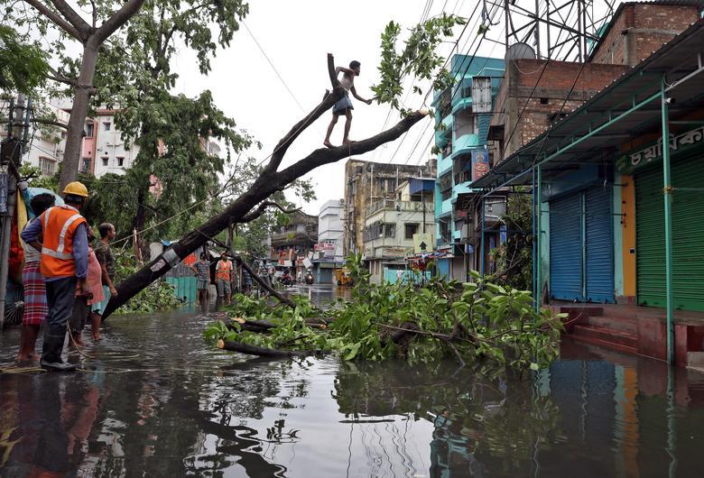 Cây xanh tróc gốc gây nguy hiểm cho người dân khi vướng vào những đường dây điện chằng chịt. Ngay sau đó, người dân địa phương phải tiến hành cắt tỉa cành, di dời thân cây đổ ngã để giúp đường sá thông thoáng trở lại.