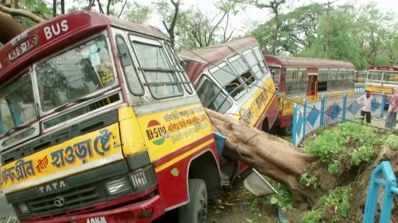 Cây xanh đổ ngã đè lên một chiếc xe bút khiến thân xe biến dạng.