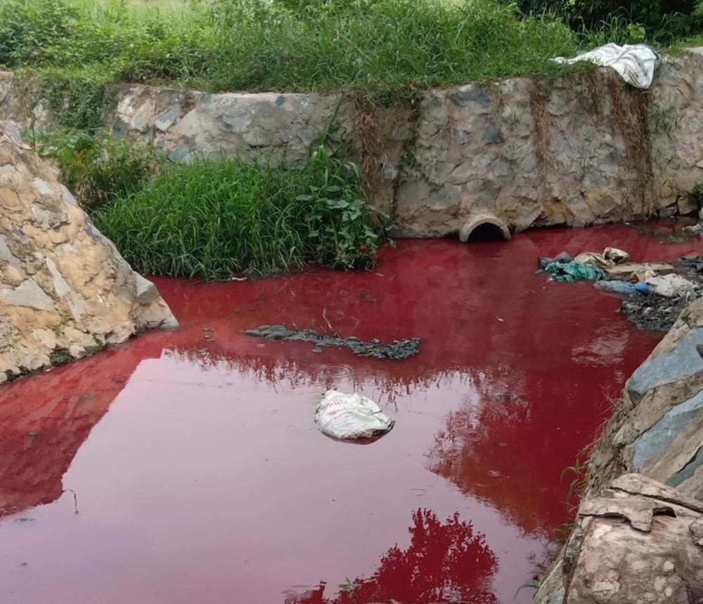 Nước chuyển màu đỏ dài khoảng 50m tại suối Cây Sao có chiều dài khoảng 800m