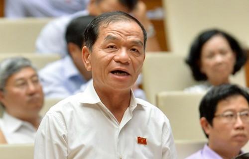 ĐBQH Lê Thanh Vân khẳng định, ĐBQH là hạt nhân hoạt động của Quốc hội
