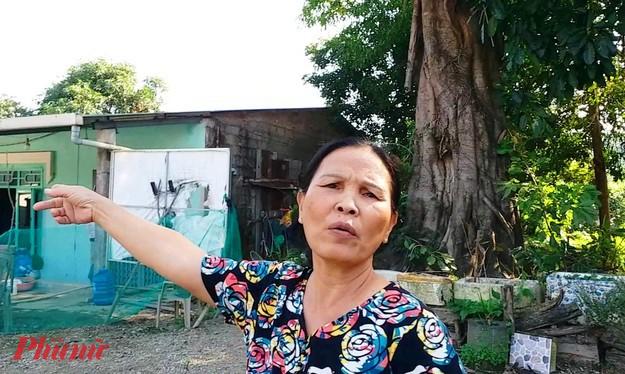 Bà Lan thừa nhận bản thân không nhận bất kỳ khoản tiền nào từ chủ cây. Bà Lan cho biết, lẽ ra hồi tháng 6/2019 con cái của bà đã cất nhà trên khoảnh đất hiện là nơi 3 cây quái thú đang xanh cây bén rễ
