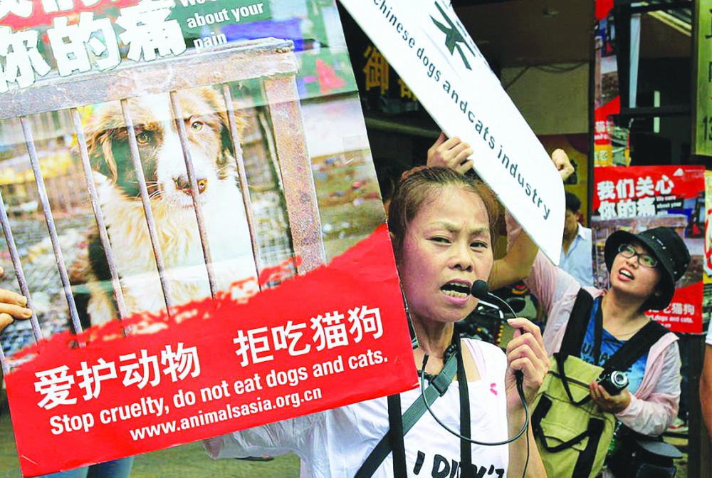 Các nhà hoạt động bảo vệ quyền động vật biểu tình bên ngoài một nhà hàng thịt chó ở Ngọc Lâm, Trung Quốc