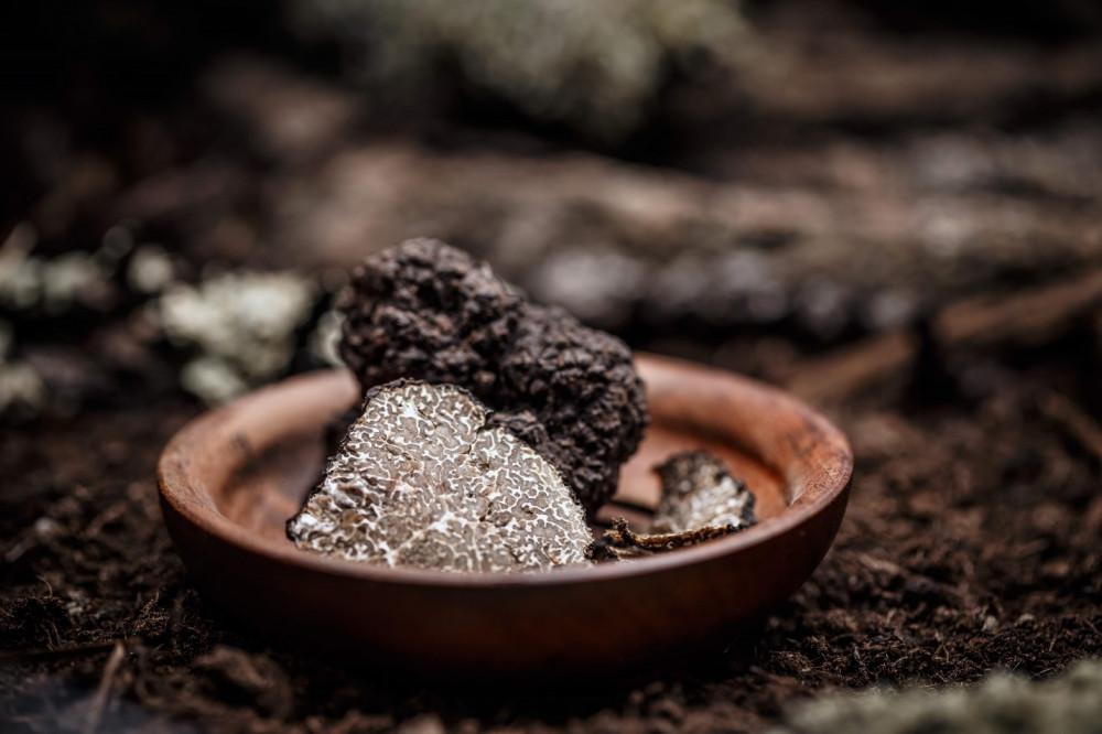 Hương vị tinh tế của nấm truffle cực kỳ khó lưu giữ