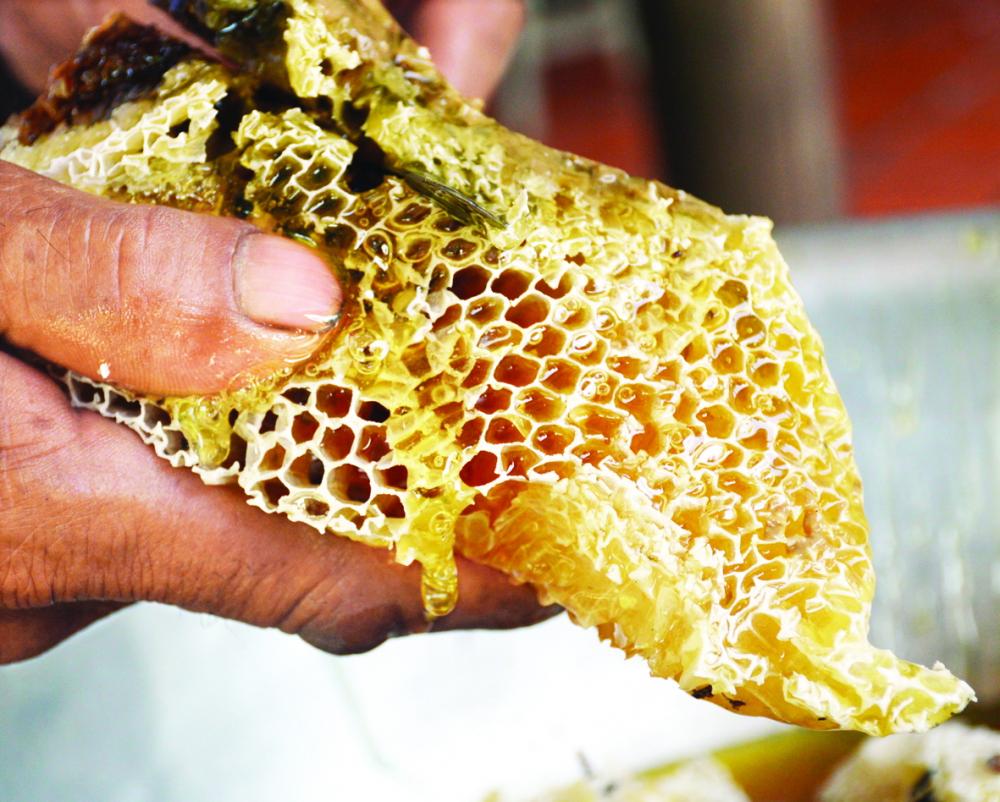 Mật ong rừng U Minh có màu vàng óng, đặc sánh, thơm mùi hoa tràm nên rất được ưa chuộng