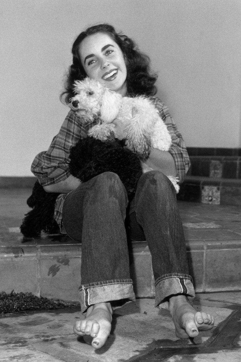 Thập niên 1940, chiếc quần Jean có nhiều tiện ích hơn, tuy nhiên nó vẫn được cho là thích hợp với công việc trong khu vườn nhà hơn là mang tính thời trang. Đay là lý do vài sao Elizabeth Taylor mặc quần jean khi tắm cho các chú cún cưng của mình.