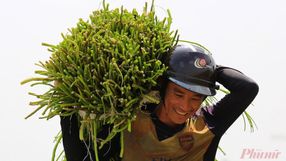Anh Dũng, quê Cà Mau hành nghề hái rau muống nước ở Sài Gòn, mỗi ngày anh hái được vài chục ký, có hôm hơn nhưng cũng có hôm không có. Nghề này thu nhập không ổn định anh chia sẻ.