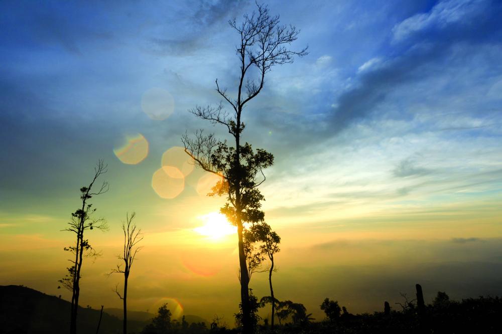 Đón tia nắng đầu tiên của bình minh trên đỉnh núi