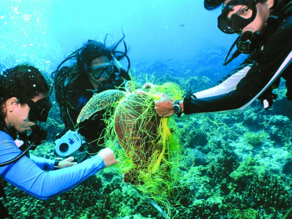 Giữ cho đáy biển luôn sạch đẹp cũng là bổn phận của mỗi cá nhân trên hành tinh này
