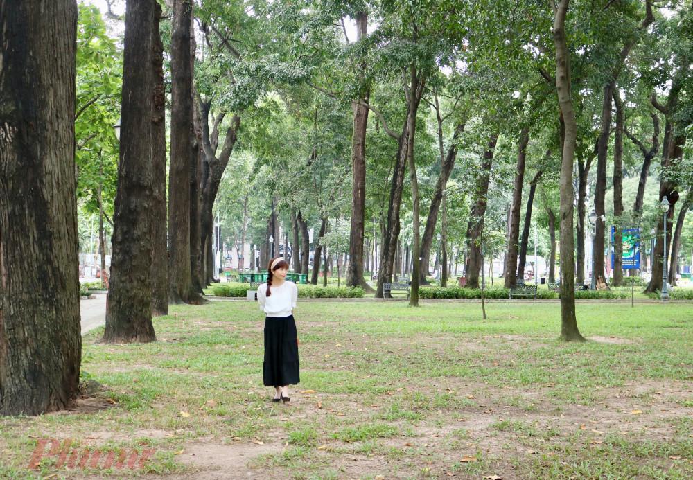 Bạn có nhận ra khu rừng trong thành phố?