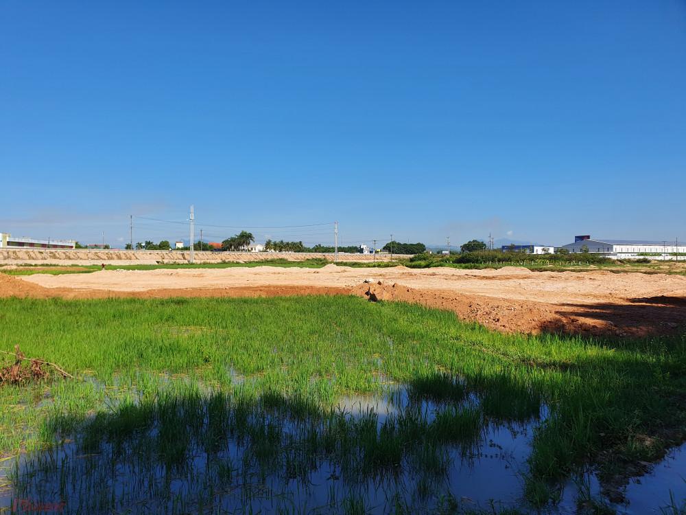 Dự án của Công ty TNHH MTV Đất Xanh Quảng Ngãi lấp đất lúa của người dân khi chưa hoàn thiện thủ tục