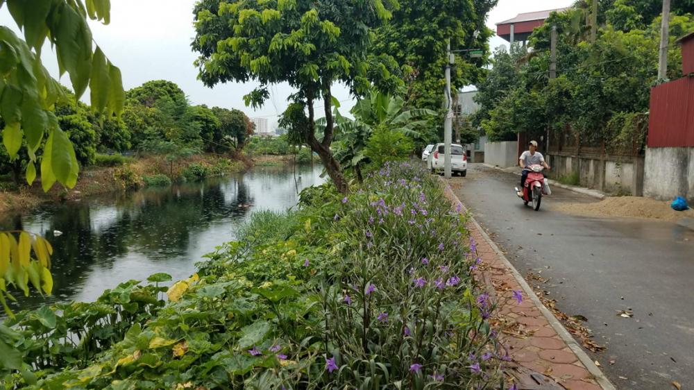 13km sông thối Cầu Bây chảy qua rất nhiều khu dân cư