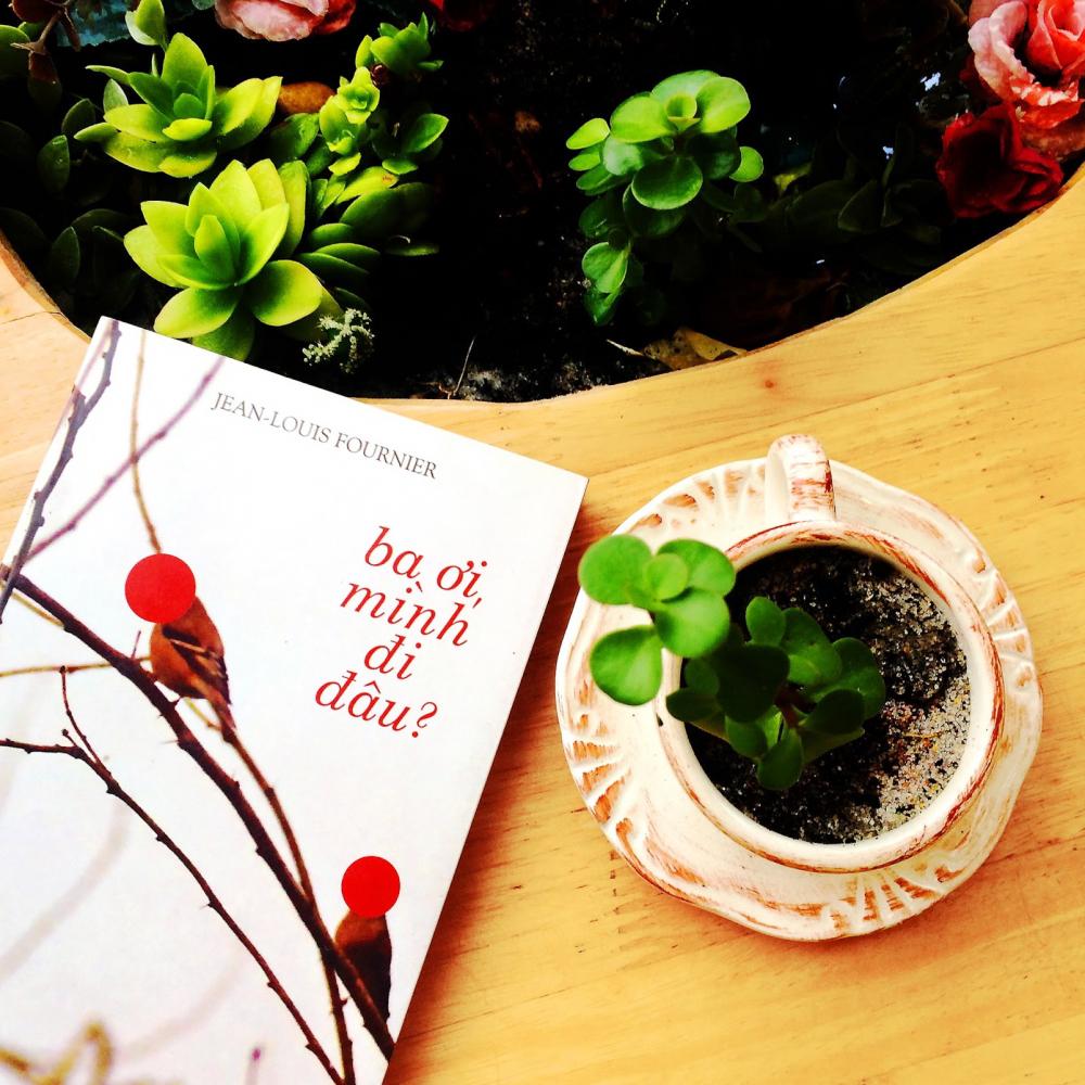 Tự truyện Ba ơi, mình đi đâu? từng đoạt giải Fémina - một giải thưởng văn học danh giá của nước Pháp - năm 2008