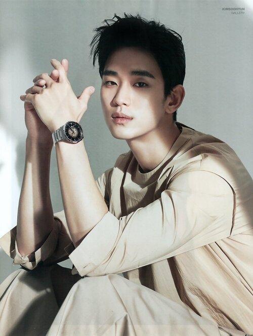 Kim Soo Hyun được giới chuyên môn và người hâm mộ đáng giá cao về diễn xuất.