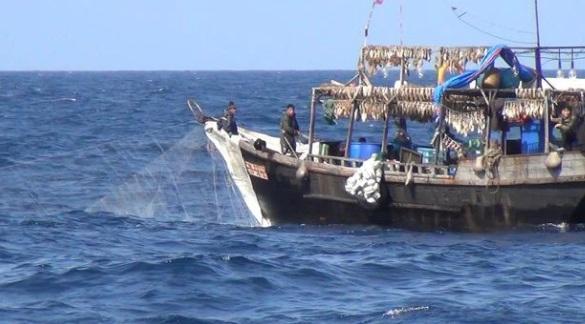 Đội tàu cá công nghiệp Trung Quốc được cho là khai thác bất hợp pháp ngư trường thuộc lãnh hải Triều Tiên, buộc ngư dân nước này phải tiến xa hơn ra biển, dẫn đến những vụ mất tích, trôi dạt.