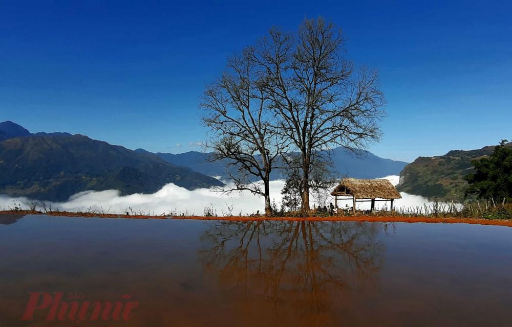 Ruộng bậc thang mùa nước đổ ở công viên Choản Thèn. Trong tiếng nói của người Hà Nhì, choản thèn có nghĩa là những thửa ruộng hình tròn. Ảnh: Ly Xá Xuy