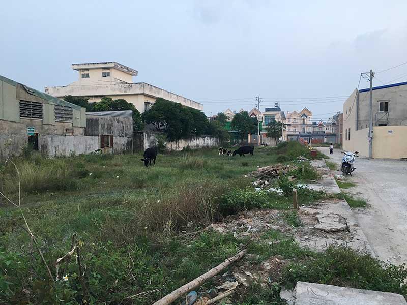 Thanh tra TPHCM kiểm điểm một số phòng ban của huyện Hóc Môn chậm trễ trong việc giải quyết hồ sơ đất đai