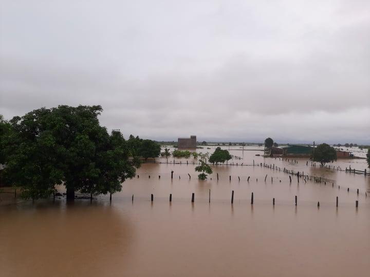 Nhiều cánh đồng lúa của người dân ngập sâu trong nước