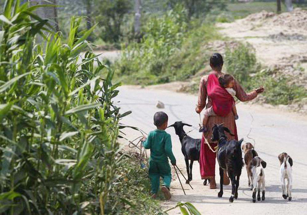 Áp lực chăm sóc gia đình, thất nghiệp đè nặng lên vai phụ nữ Nepal trong dịch COVID-19