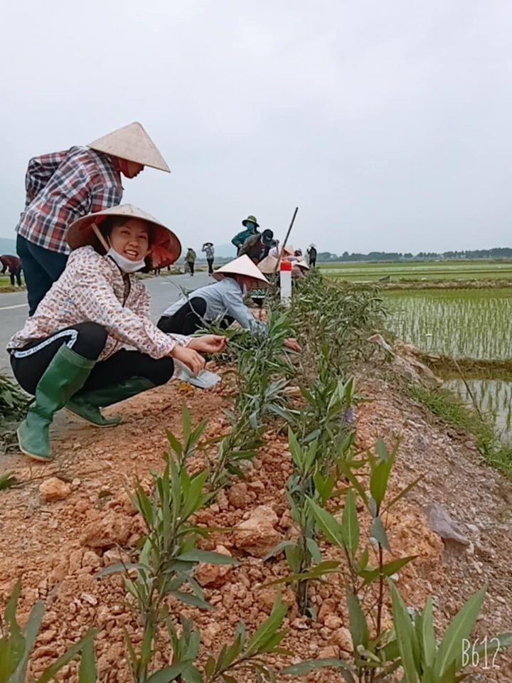 Phụ nữ thôn Chùa, xã Tiến Dũng, H.Yên Dũng ra quân trồng con đường hoa