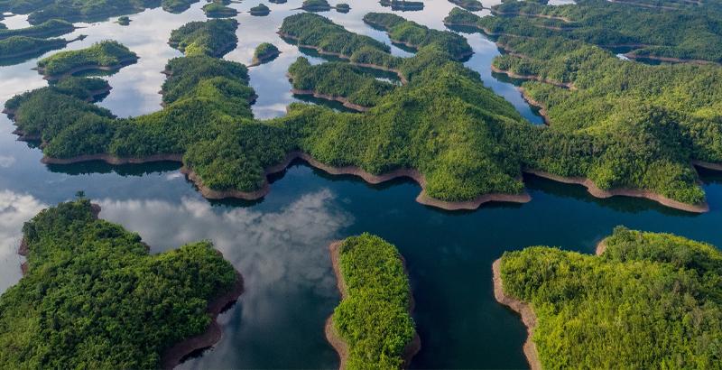 Bạn có thể đến hồ Tà Đùng bất cứ lúc nào nhưng thời điểm đẹp nhất của hồ là từ tháng 7 cho tới tháng 12. Bởi đây là lúc mực nước tại hồ dâng cao, trời xanh và những cơn mưa tưới tẩm cây cối xanh tốt, mượt mà tạo nên một bức tranh thanh bình, mát mẻ.