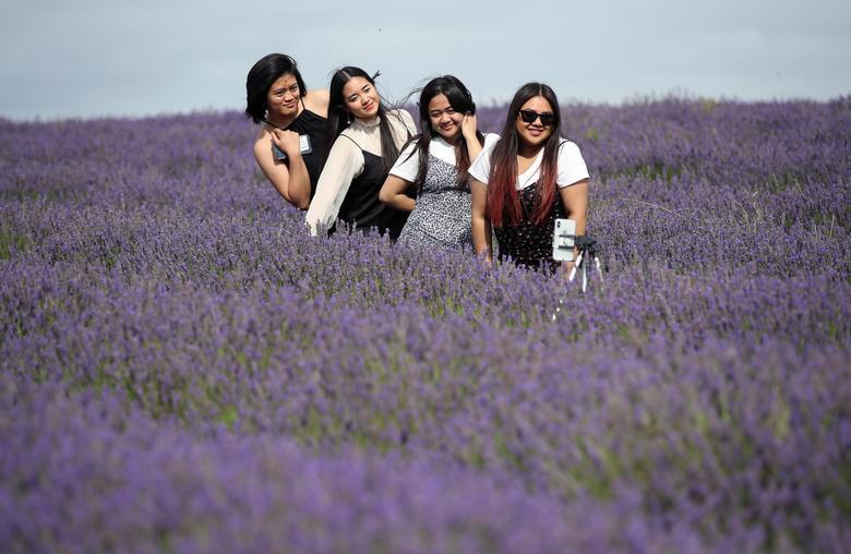 Một nhóm khách nữ tự đặt điện thoại để chụp ảnh.