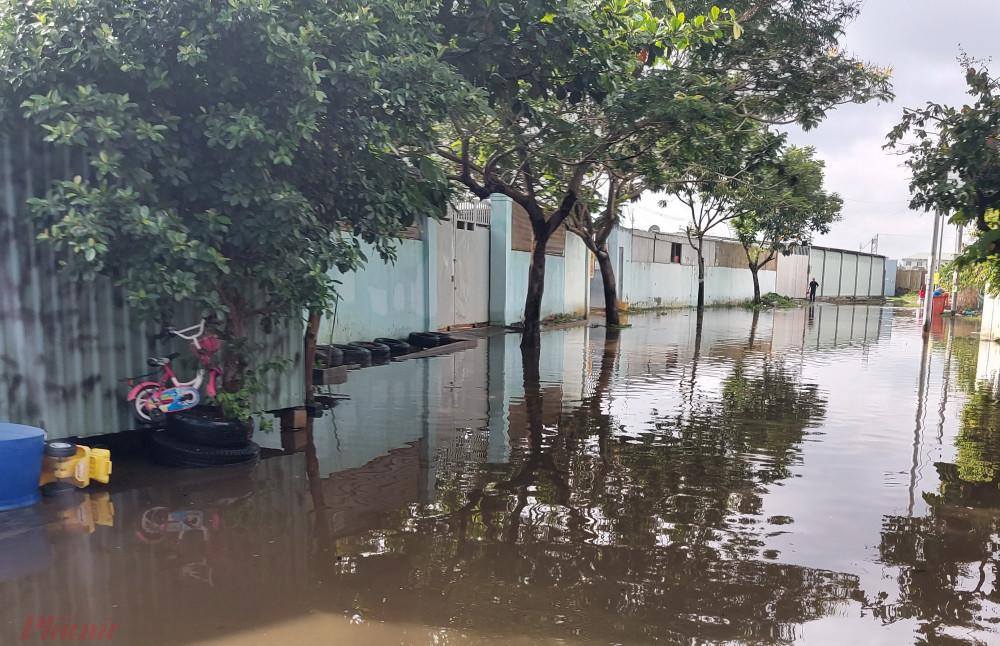 """Đến 9 giờ ngày 7/8, con đường vào khu dân cư trên đường số 1, quận Bình Tân (cạnh chung cư Ehome 3, phường An Lạc) vẫn ngập nước lênh láng. Chị Trần Thị Thanh Hiền, người dân địa phương – cho biết: """"Khu vực này bị ngập suốt 2 ngày qua""""."""