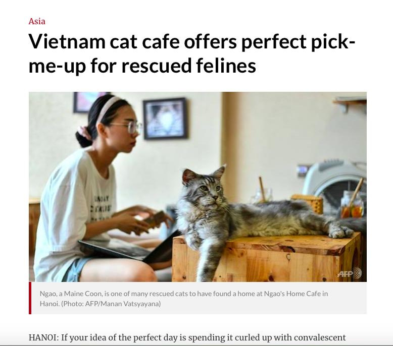 Tờ Channel News Aisa dẫn lại thông tin của AFP về quán cà phê đặc biệt ở Hà Nội