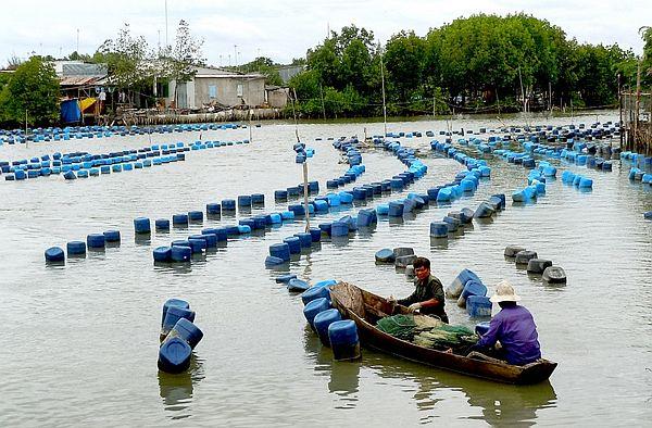 Cần Giờ cần cơ chế để tận dụng được diện tích bãi bồi và mặt nước phục vụ sản xuất