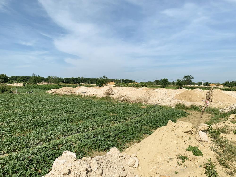 Nhiều mảnh đất nông nghiệp màu mỡ bị dự án phân lô