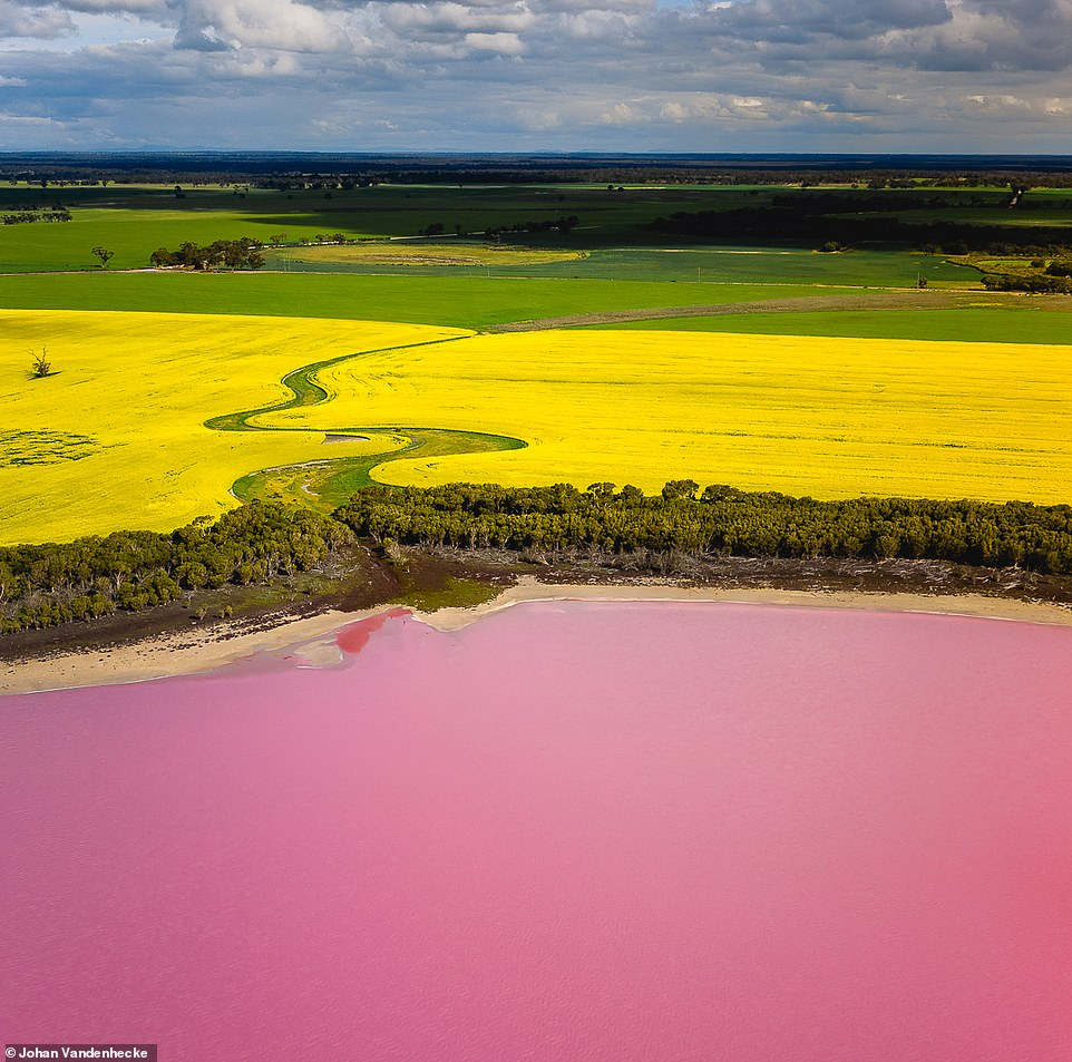 Một trong những hồ nước hồng bắt mắt của Nam Úc